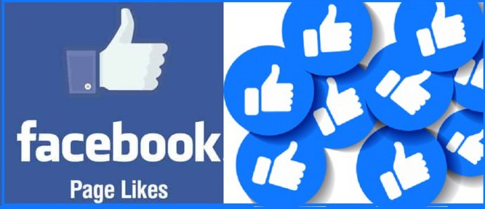 Facebook Page Likes Service Provider in Jaipur