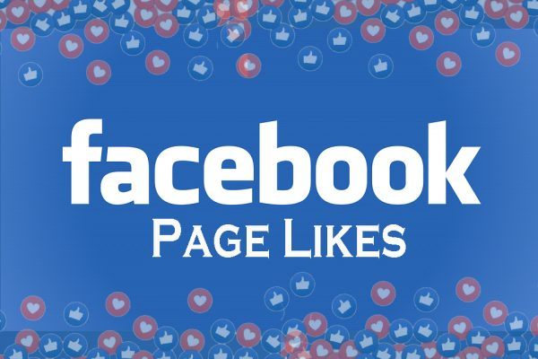 Facebook Page Likes_ BroSis Tech